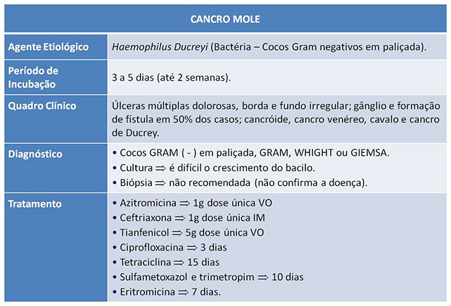 Cancro mole ou bubo fotos 85